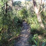 Flat Rock Creek track (172305)