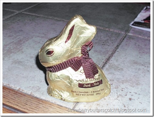 The Life Cycle of a Chocolate Bunny for Easter