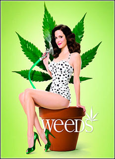 Weeds 1ª Temporada Completa (2005) Torrent BRRip Blu-Ray 720p Dual Áudio