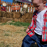 Pumpkin Patch - 115_8248.JPG