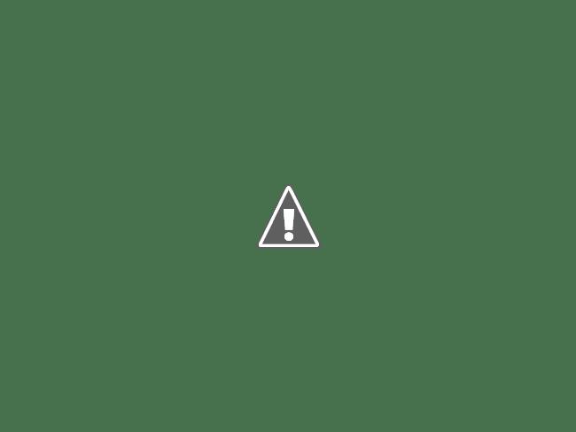 Detalhe da disposição das toras de madeira encaixadas nos blocos de concreto.