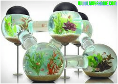 Tambahkan aquarium mini