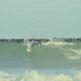 _DSC0207.thumb.jpg