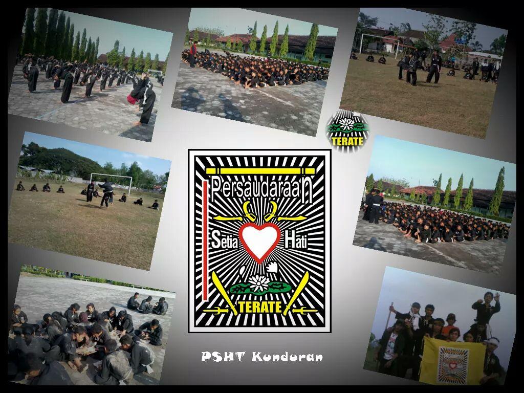 2016 PSHT INDONESIA