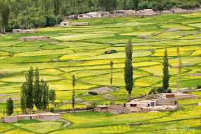 Handrap village, Gilgit baltistan, Pakistan