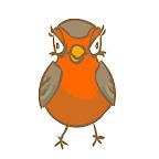 vogel-frontal.JPG