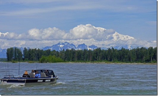 Mt. Denali, from Talkeetna Susitna River Park