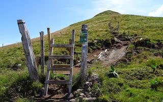 Sentier d'accès au sommet du Puy Violent (1592 m).