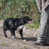 Survival voor Baas en Hond 2012 - DSC_0162.JPG