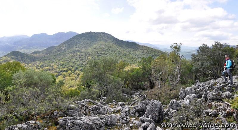 Llanos del Campo - Tesorillo - Cerro del Granadillo - Cerro de las Cuevas - Llanos del Berral