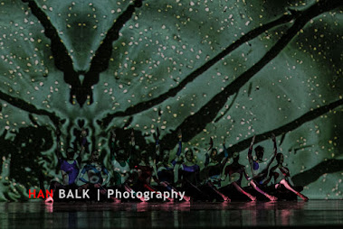 Han Balk Wonderland-7510.jpg