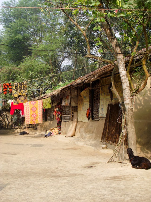 Beautiful bangladeshi village home picture.