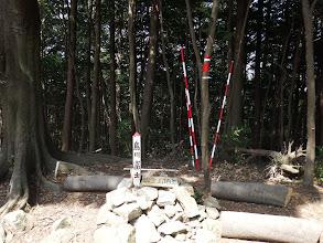 額堂山(鳥川富士)
