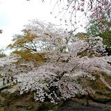 2014 Japan - Dag 8 - tom-SAM_0510-0015.JPG