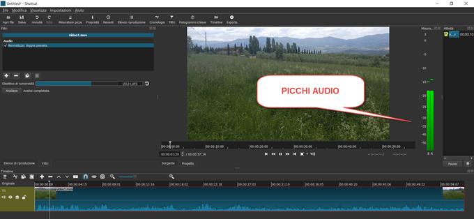 picchi-audio