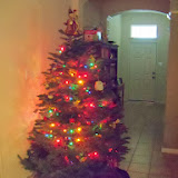 Christmas Lights - 115_9044.JPG