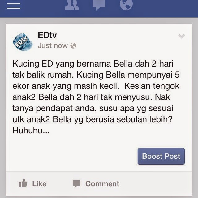 Edtv Blog 05 01 2014 06 01 2014
