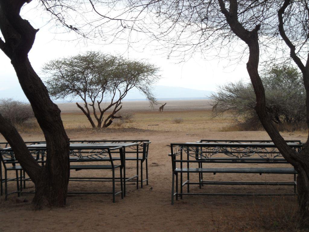 Manyara'da Kahvaltı yeri