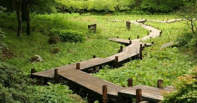 Zen garden zen garden il faut cultiver notre jardin - Il faut cultiver son jardin voltaire ...