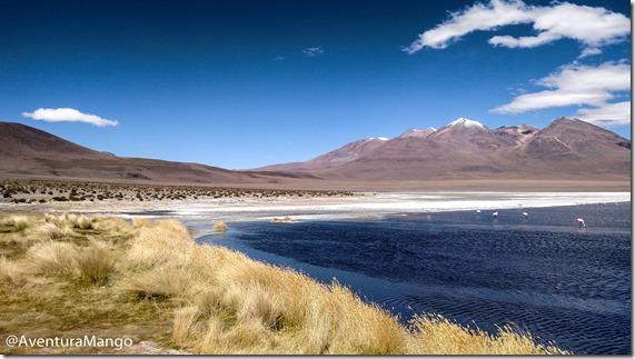 Laguna Cañapa - Bolívia