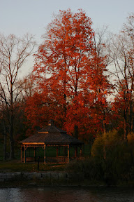 Gazebo and red leaves