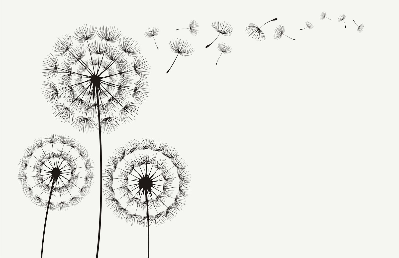 Vector Dandelion Blowing Silhouette Free Download Vector CDR, AI, EPS and PNG Formats