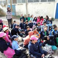فعالية السلاحف البحرية في مدرسة الشافعي