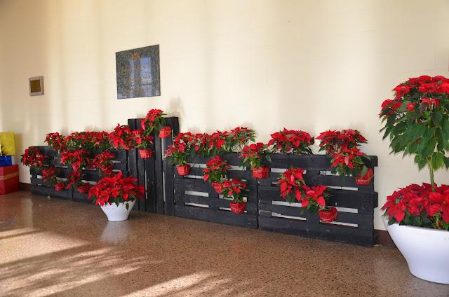 El Nadal ens inspira... - DSC_0044.JPG