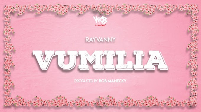AUDIO | Rayvanny – Vumilia | Download new song