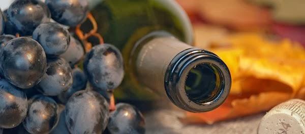 Rota dos Vinhos do Centro de Portugal