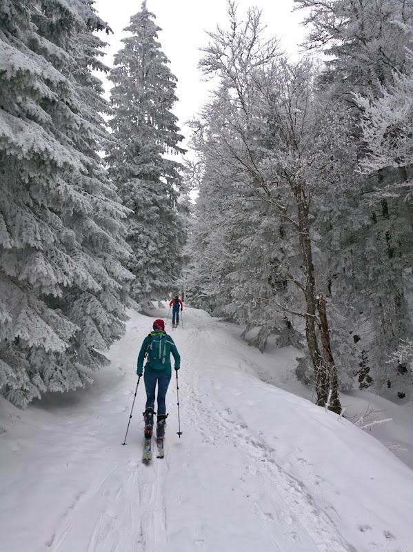 Din fericire ne suim repede pe schiuri, aici urcam cu spor spre saua Joaca.