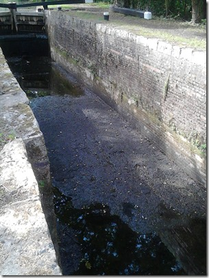 basingstoke canal 2018 2