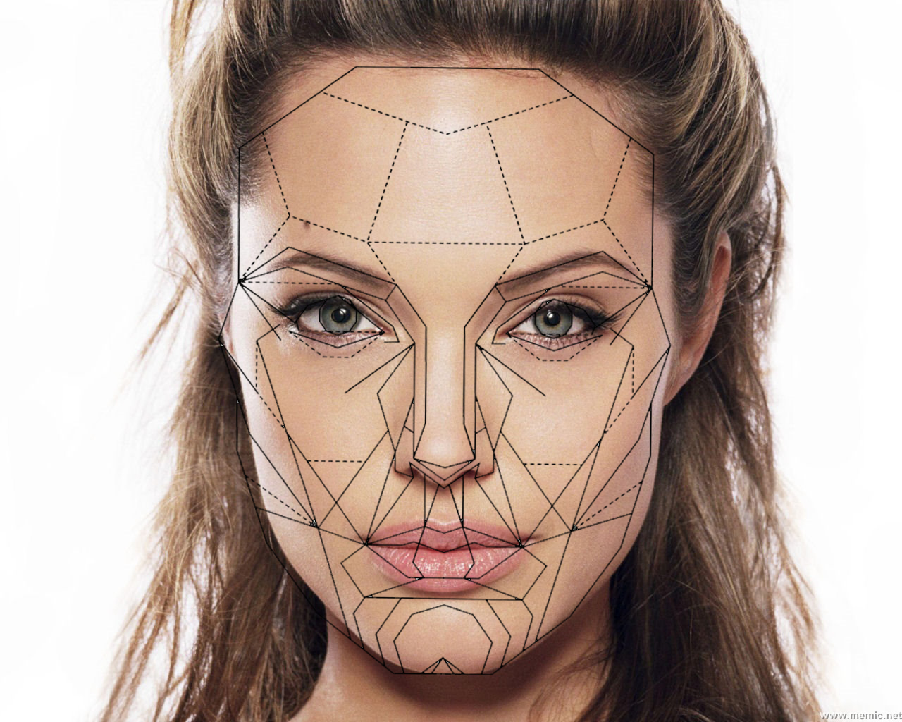 Angelina Jolie fits the Golden Ratio Facial Mask perfectly. Angelina Jolie, though beautiful, apparently doesn't fit the mask exactly right.