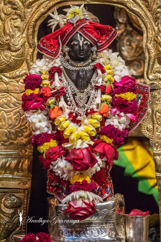 ISKCON Mayapur Deity Darshan 14 Jan 2017 (24)