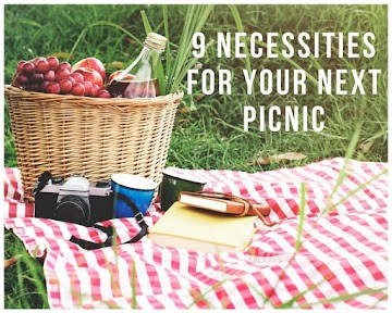 9 Necessities for Your Next Picnic