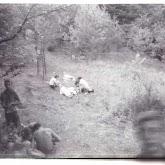 n026-029-1968-tabor-szigliget.jpg