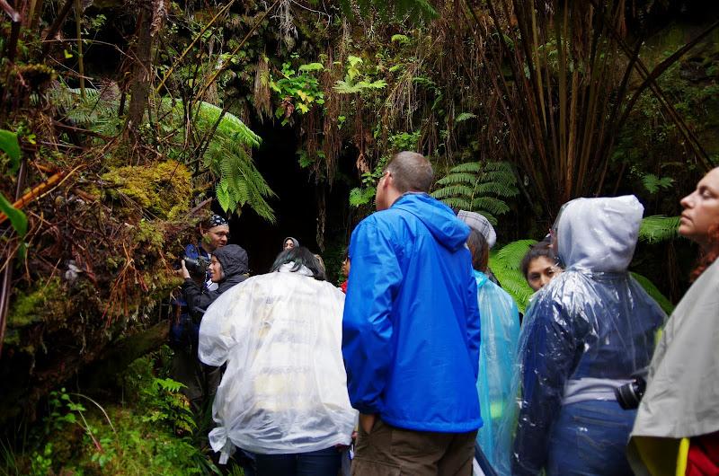 06-22-13 Hawaii Volcanoes National Park, Mauna Kea - IMGP8434.JPG