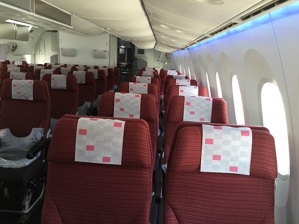 JAL407(JL407) 国際線 東京・成田-フランクフルト 2016年6月 | 機上百景