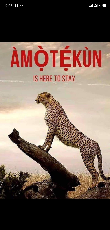 Amotekun:War Against Fulani Herdsmen As Gov.Seyi Makinde Appoints Togun As chairman and Commandant.
