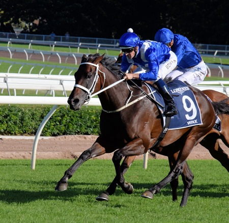 qe stakes_winx 2