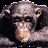 David Taylor avatar image