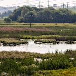 20150520_Fishing_Shpaniv_015.jpg
