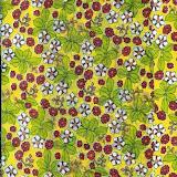 Cópia de Reps2008 Juliana005.jpg