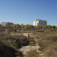 Fotos Plantacion con Ecocampus 2008 003