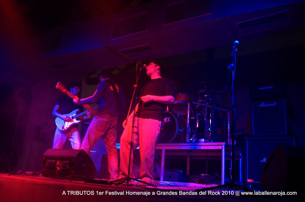 A TRIBUTOS 1er Festival Homenaje a Grandes Bandas del Rock 2010 - DSC_0075.jpg