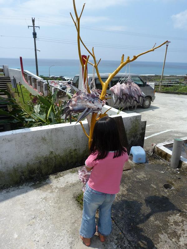 TAIWAN Ile de Lanyu - P1010535.JPG