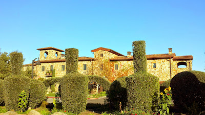 The amphora shaped shrubbery on the grounds of Jacuzzi Family Vineyards