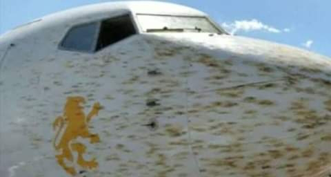 Ethiopian plane forced to land over hitting locusts. PHOTO | BMS