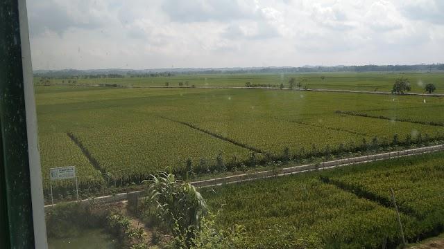 Dugaan Pengelapan Aset dan PAD Dinas Pertanian Mulai Terungkap