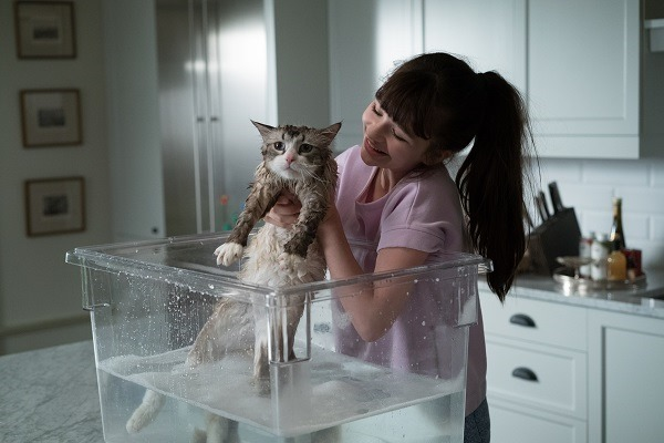 "M33 Melina Weissman and Mr. Fuzzypants  star in EuropaCorp's   ""NINE LIVES"".